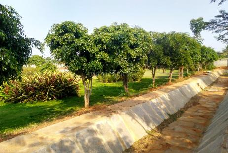 Plots For Sale in Bangalore   Land and Sites For Sale in