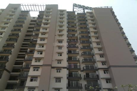 2bhk Multiy Apartment For Rent In Amrapali Castle At Tech Zone Gautam Budh Nagar