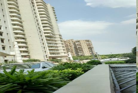 Dlf Icon Rent 26 Flats For Rent In Dlf Icon Gurgaon