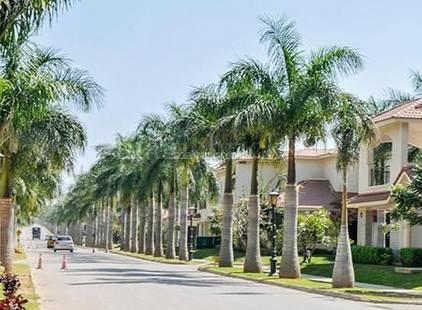 3bhk Multiy Apartment For Rent In Adarsh Palm Retreat At Sarur Road Image