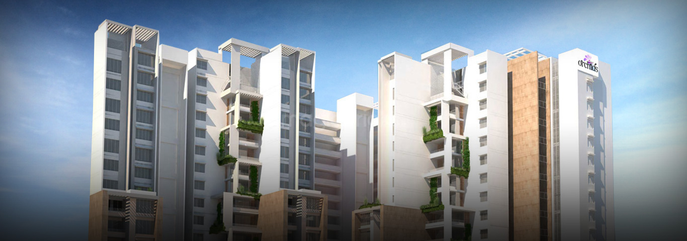 Orchid homes are purely constructed with