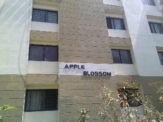 3 Bhk Flats For Rent In Bellandur Bangalore Triple