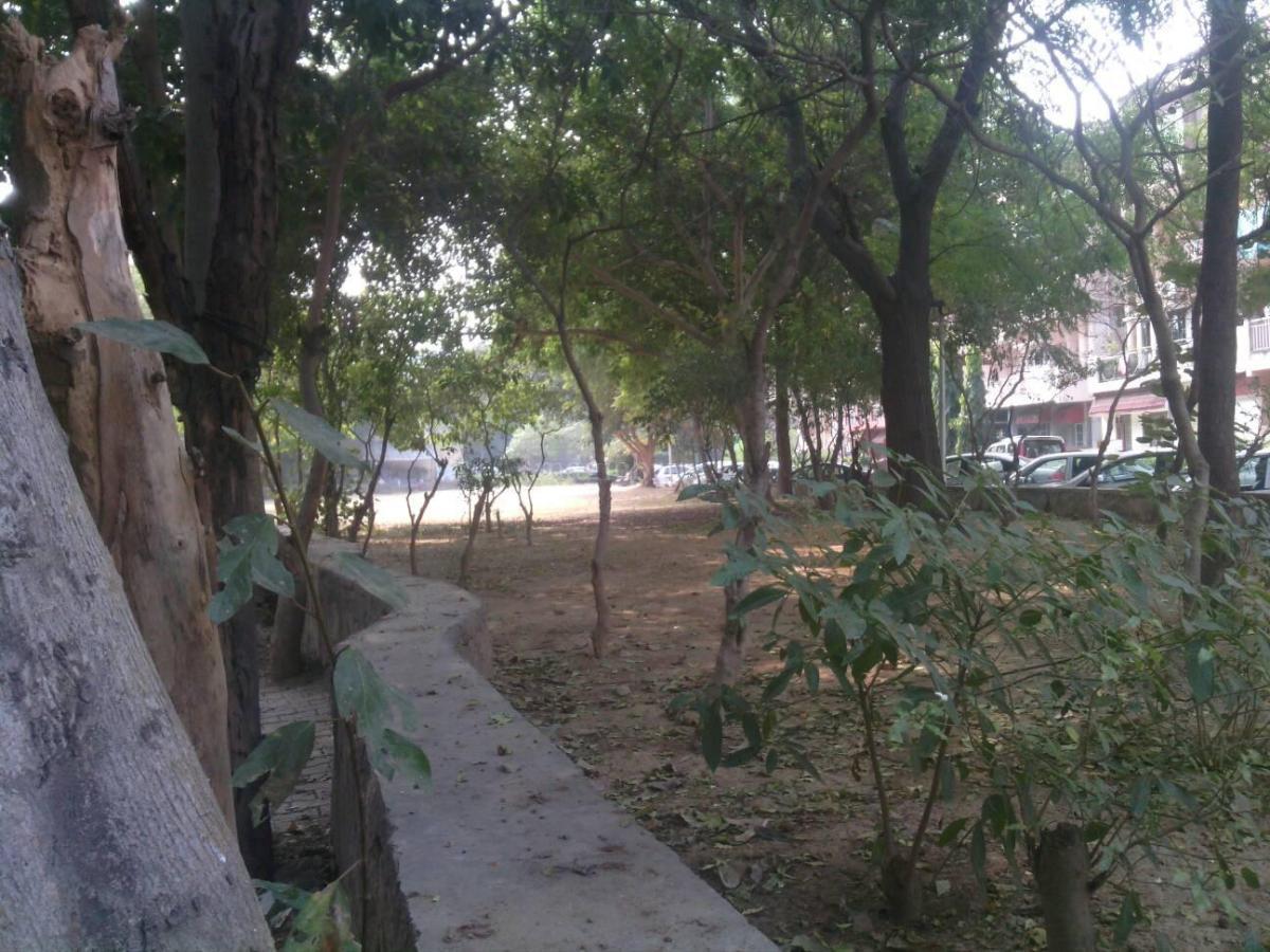 dda flats sector d pocket 6 in vasant kunj new delhi magicbricks 1 bhk multistorey apartment in dda flats sector d pocket 6 at vasant kunj sector d