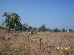 Property in Malvan | Property For Sale in Malvan Sindhudurg