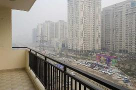 Pg In Noida City Centre Metro Noida Paying Guest Accommodation