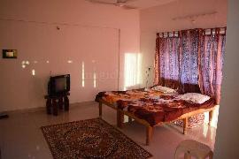 Studio Apartment For Rent In Pune Magicbricks