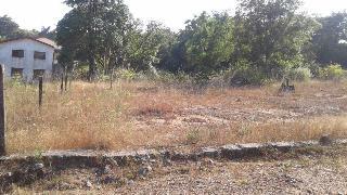 Property For Sale in Sindhudurg   MagicBricks