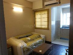 Studio Apartment For Rent In Paras Tierea At Sector 137 Noida Express Way Image