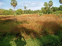 Property in Kaup   Property For Sale in Kaup Udupi -MagicBricks