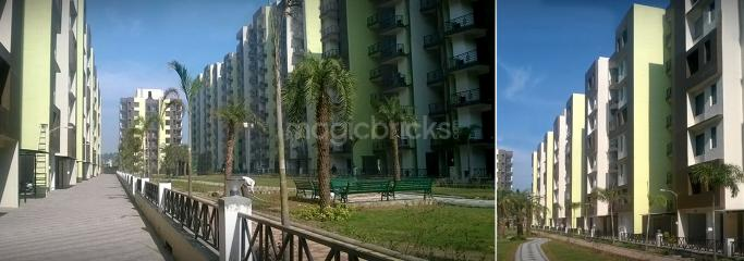 garden city apartments for rent. 3BHK Multistorey Apartment For Rent In Maya Garden City At Zirakpur-Image Apartments