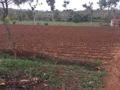 Buy Agricultural Land in Thali,Hosur - 1 Acre Thalli