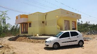 Olx Trichy House