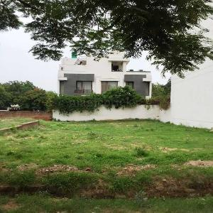 502 Sq-yrd Residential Plot & Land for Sale in Sector 45 Block