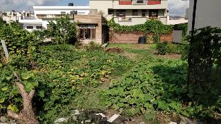 Residential Plots For Sale in Sector-2 Panchkula - Buy