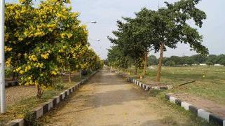 Residential Plots For Sale in Shadnagar Hyderabad - Buy Residential