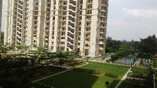 4 Bhk Flat Apartment For Dlf Capital Greens In New Moti Nagar Kirti