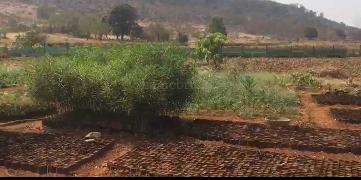 Agricultural Land for Sale in Thane | MagicBricks