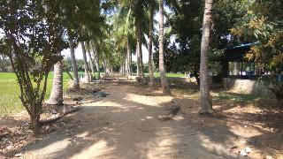 Agricultural Land for Sale in Chennai | MagicBricks
