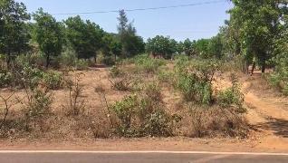 Agricultural Land for Sale in Kolhapur   MagicBricks