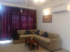 the letter movie furnished flats for rent in lucknow rent fully 12212 | 40302007 8 PropertyImage733 0542157866748 180 240