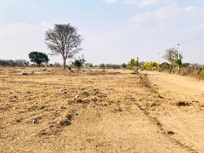 Buy Agricultural Land in Shadnagar,Hyderabad - 726 Sq-yrd