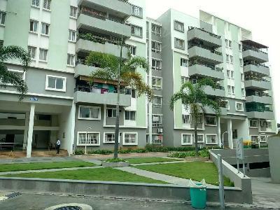 Buy 3 BHK Flat/Apartment in SJR LUXURIA Arakere MICO