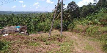 Agricultural Land for Sale in Mangalore | MagicBricks