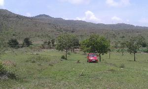 Agricultural Land for Sale in Pune | MagicBricks