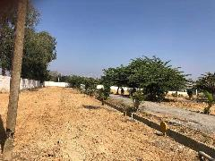 Plots For Sale in Hoskote | Land & Sites for Sale in Hoskote