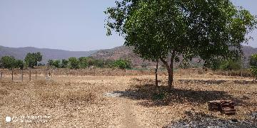 Agricultural Land for Sale in Raigad | MagicBricks