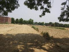 Residential Plots For Sale in Kanpur road Lucknow - Buy