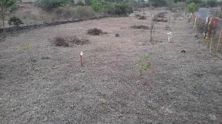 Residential Plots For Sale in Pune - Buy Residential Land in