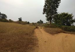 Agricultural Land for Sale in Hosur | MagicBricks