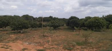 Agricultural Land for Sale in Hyderabad | MagicBricks