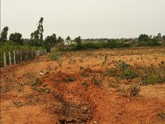 Agricultural Land for Sale in Devanahalli, Bangalore | Plots