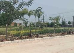 Residential Plots For Sale in Dhamtri Road Raipur - Buy