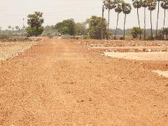 Agricultural Land for Sale in Guntur | MagicBricks
