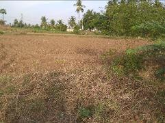 Property in Chinna Thirupathi | Property For Sale in Chinna