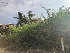 Commercial Land for Rent in Trichy     MagicBricks